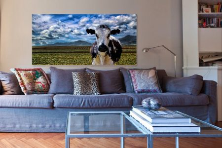 Cow Living Room